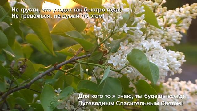 IMG_3322